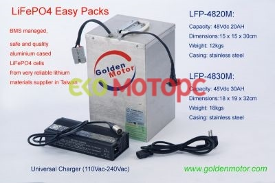 LiFePO4 Battery Pack with BMS and Charger